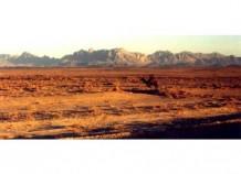 Desert near Kandahar, 2000